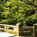 緑の大宮橋