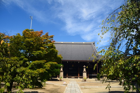 初秋の妙顕寺