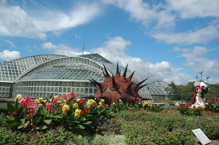 初秋の植物園