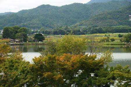 岡田茂吉記念館から見る広沢池