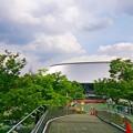 Photos: ところざわのゆり園 西部ドーム