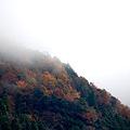 Photos: 紅葉する山
