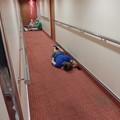 写真: どこでも寝る人