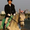 川崎競馬の誘導馬04月開催 桜Verその2-120409-07-large