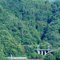 Photos: 中央線四方津の大呼戸橋梁を渡る211系普通電車