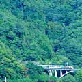 Photos: 大呼戸橋梁を渡るE257系中央線特急あずさ号