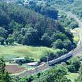 緑の中のカーブを行く中央線211系普通電車