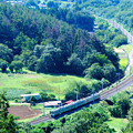 緑の中のカーブを行く211系中央線普通電車