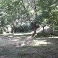 Photos: 末森城二の丸跡。だいぶ広い削平地です。かなりの兵数が入れられそう...