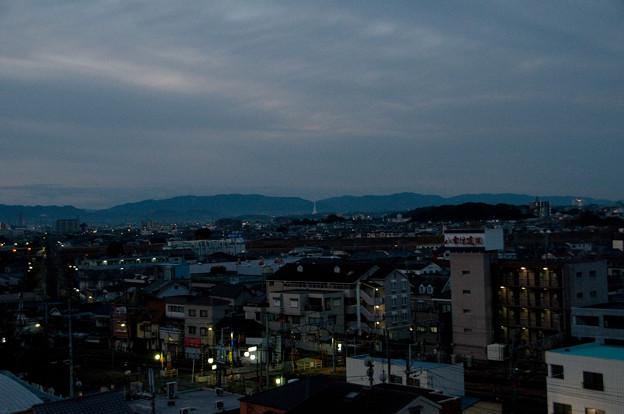 夜明け前の塔