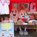 Photos: 店番をする・・むひょこちゃん と 樹氷のじゅっきーくん