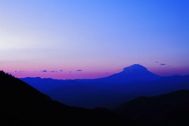 写真: 池の茶屋林道 夜明け前