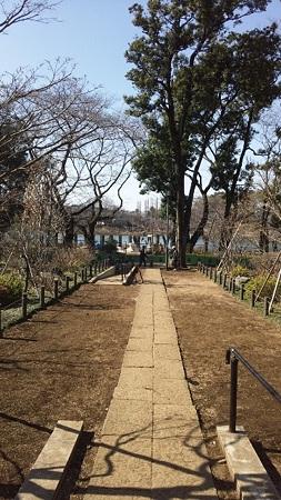 お墓から公園を望む