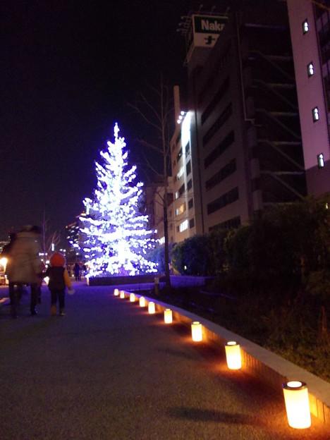 Photos: 光のリバースクエア