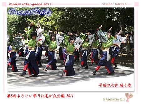 早稲田大学 踊り侍_17 - よさこい祭りin光が丘公園2011