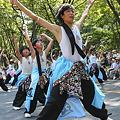写真: 朝霞鳴子一族め組_11 -  「彩夏祭」 関八州よさこいフェスタ 2011