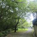 Photos: 緑道~♪