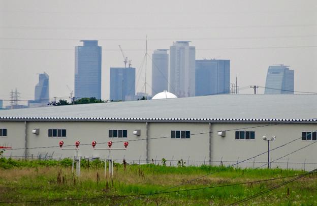 写真: エアフロントオアシス(小針公園)から見た名駅ビル群 - 2