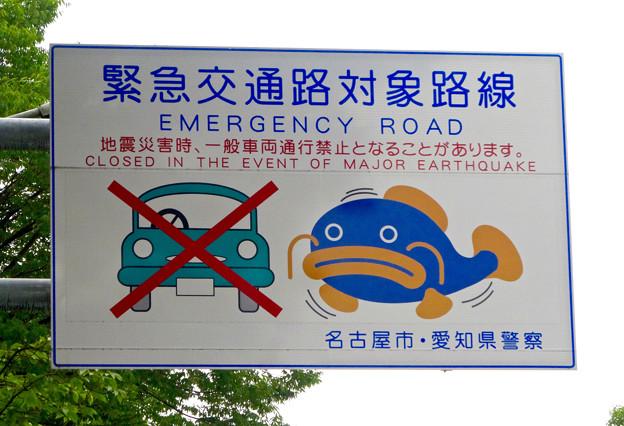 「緊急交通路対策路線」に指定されてる、名古屋城横の大津通 - 2