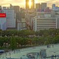写真: 愛知芸術文化センターから見た、夕暮れ時の名駅ビル群 - 6