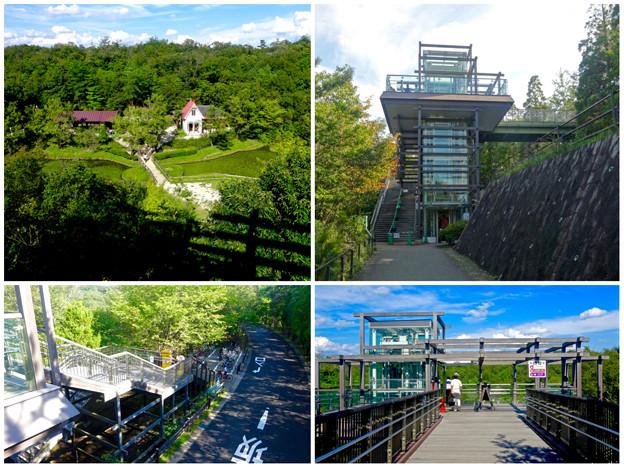 愛・地球博記念公園:「サツキとメイの家」と専用展望台 - 1