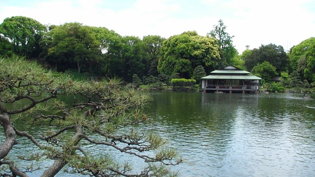 清澄庭園1