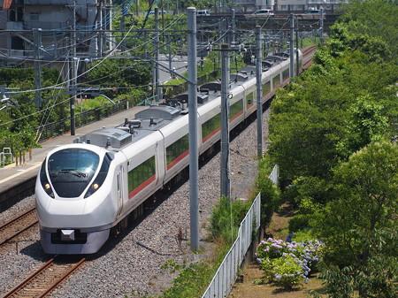 E657系特急ひたち常磐線偕楽園~赤塚02