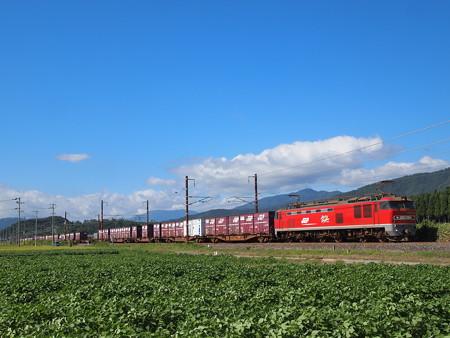EF510貨物 北陸本線河毛~虎姫