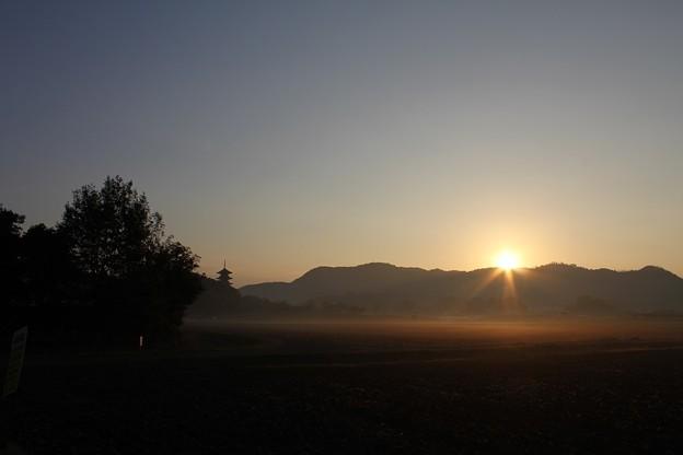 国分寺の朝日