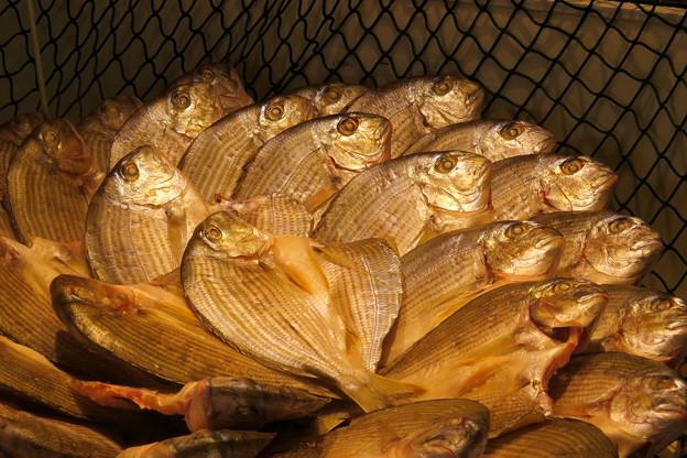 小鯛の干物 IMG_4678