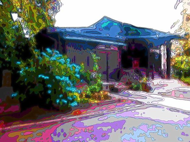 世田谷線:三軒茶屋駅界隈_目青不動尊(最勝寺教学院)-紫陽花-01b