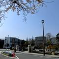田園調布駅(桜)_2015.03.30.-02