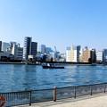 写真: 佃島_隅田川-01