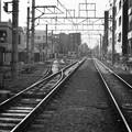 Photos: 自由(が丘)な線路