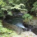 写真: P6201198