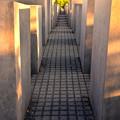 写真: ユダヤ人犠牲者記念館3