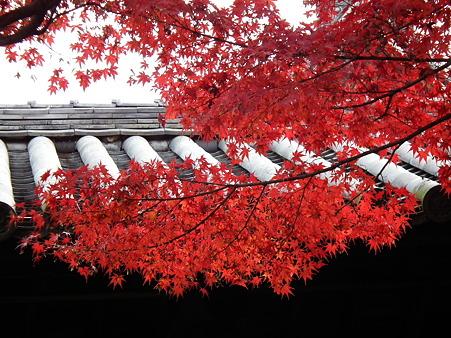 京都2 106