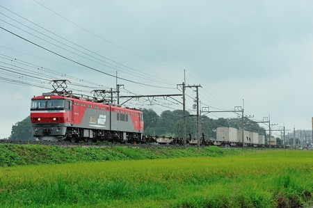 EH500-901牽引東北本線臨時貨物列車