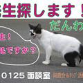 写真: 武蔵野祭『だんわ室』