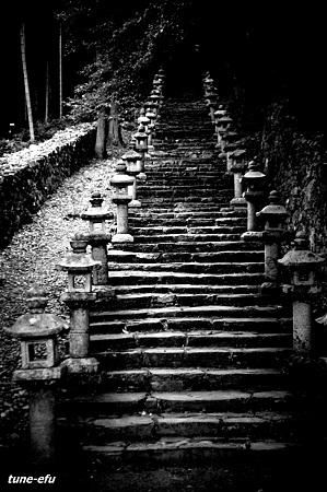 対馬にて17・階段