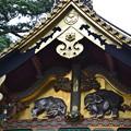日光東照宮 三神庫 想像の像