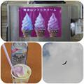 Photos: 山ぶどうソフト
