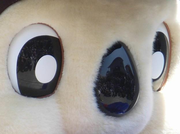 瞳に写る 鼻にも写る。