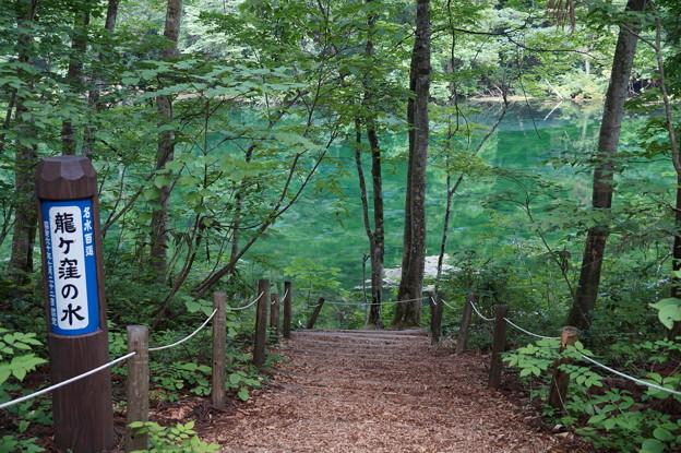 龍ヶ窪の池 3