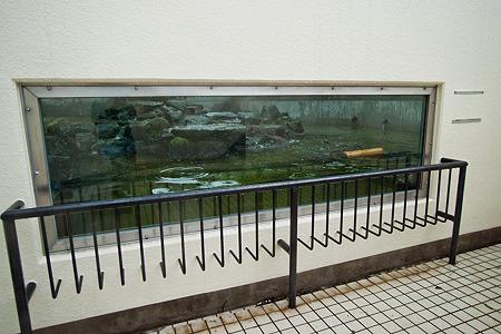 ichikawa120504005