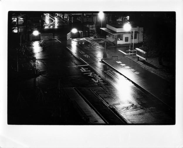 Rainy Black 1