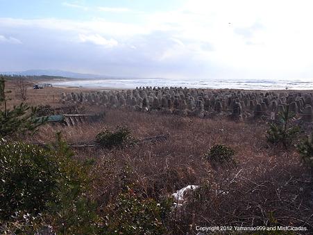 2012年2月12日、一ノ宮海岸