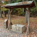 さかな公園の井戸