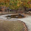 さかな公園 じゃぶじゃぶ池