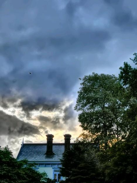 Photos: 雨上がりの夕暮れ